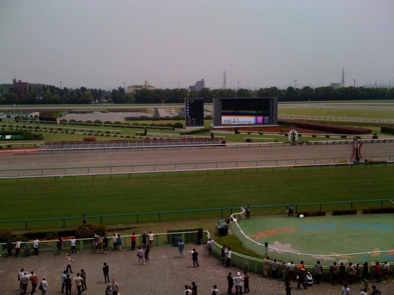 中京競馬場にきました
