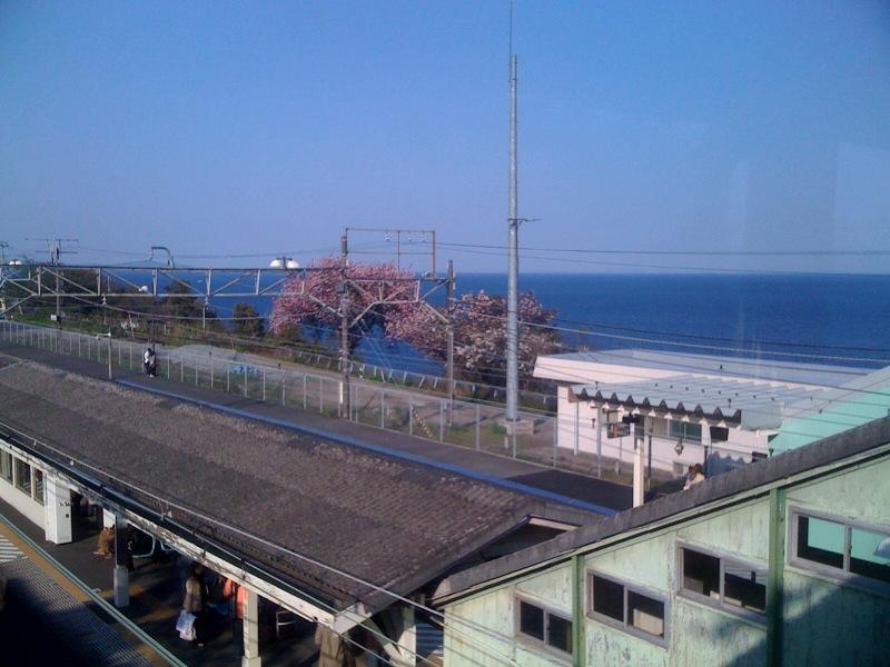 東海道線絶景駅の一つ根府川駅です