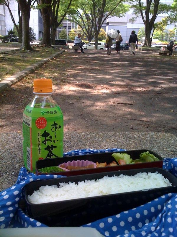 公園でお弁当です